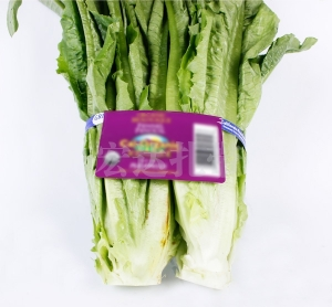蔬菜捆扎绳